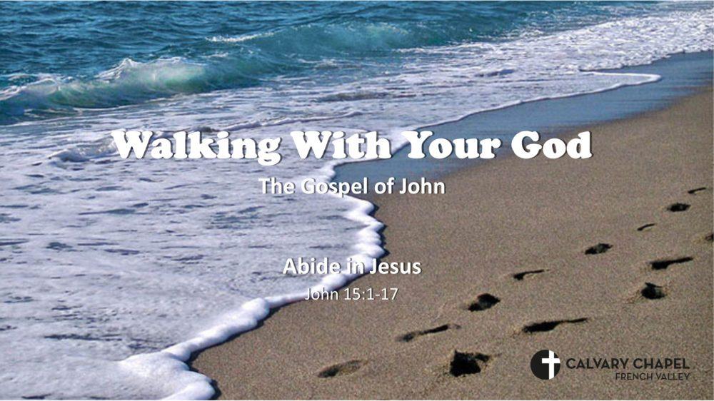 Abide in Jesus! – John 15:1-17 Image