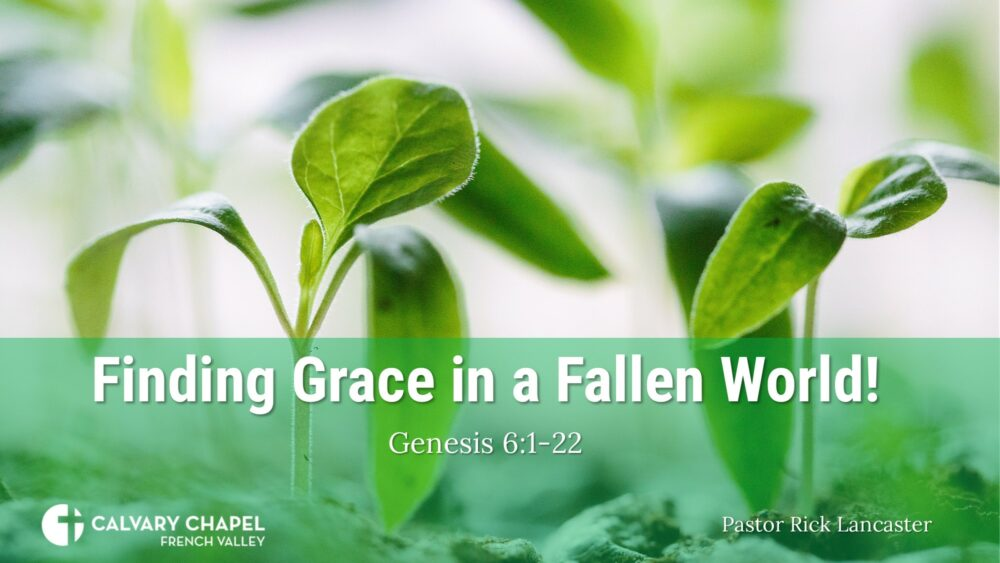Finding Grace in a Fallen World! Genesis 6:1-22
